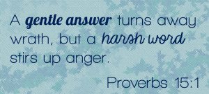 Proverbs 15-1
